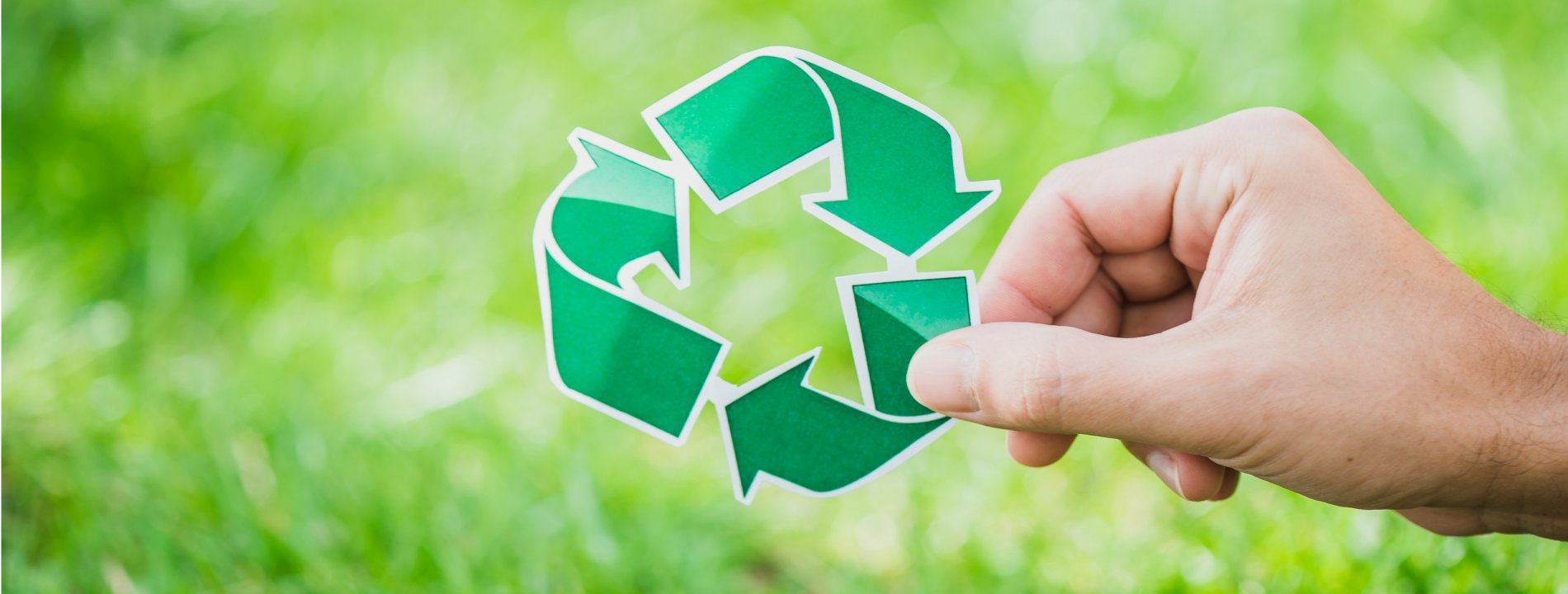 Jordanian business recycling solution
